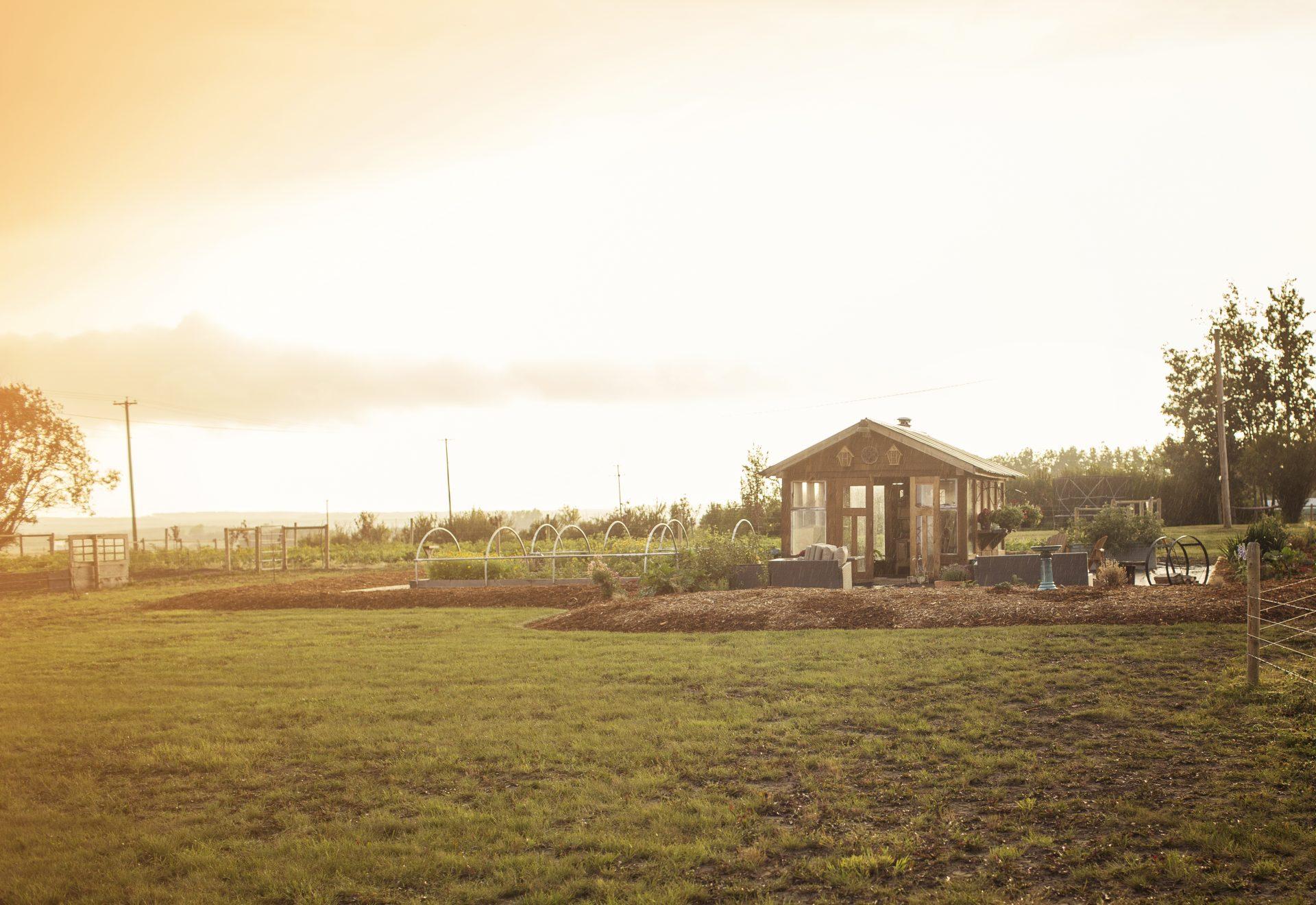 Greenhouse - Whiskey Creek Ranch